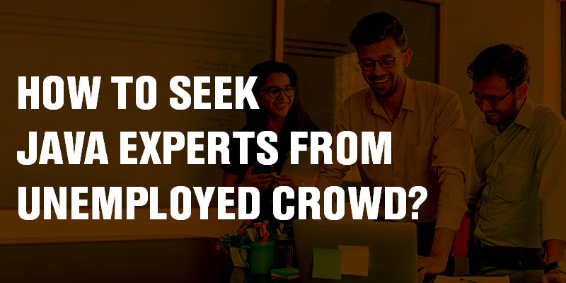 How to seek Java experts from unemployed crowd?
